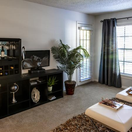 The Avenue Apartments, interior, living room, dark shelves, white couch, carpet, area rug, dark drapes, large windows, door to outside with blinds.