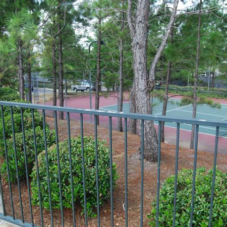 Community Tennis Court | Apartments For Rent In Leesville LA | Timber Ridge Apartments