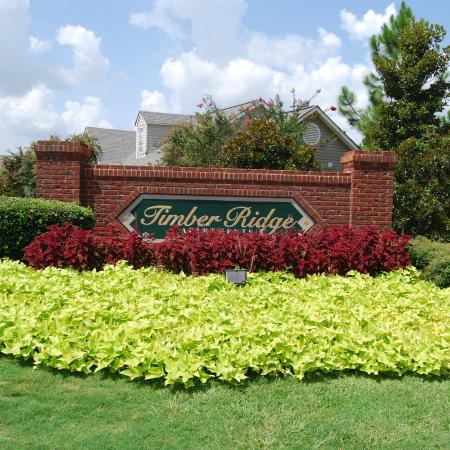 Apartments For Rent In Mobile | Timber Ridge Apartments