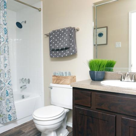 Spacious Bathroom | Garland TX Apartment For Rent | Creekside on the Green