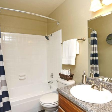 Spacious Bathroom | Dallas TX Apartment For Rent | Summerwood Cove