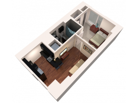 1 Bed 1 Bath Furnished