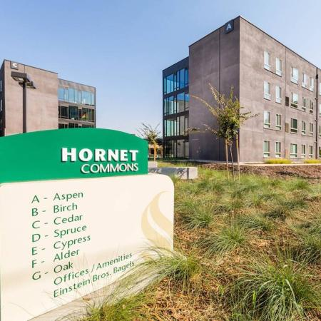 Hornet Commons Buildings