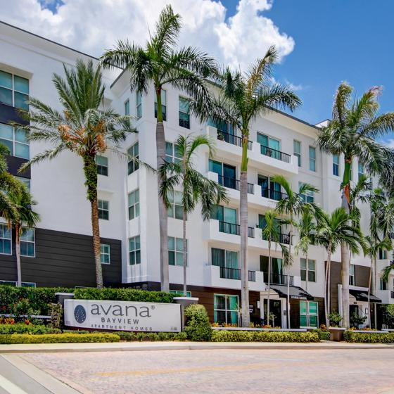 Avana Bayview, exterior, wall white building, 5 levels, palm trees, property sign
