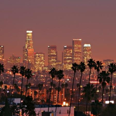 Nightlife of City Skyline with Palm Trees