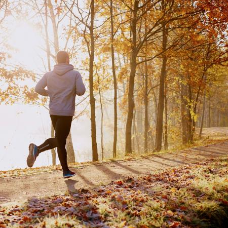 Person jogging along wooded path during sunrise
