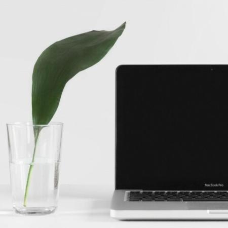 laptop to view a virtual tour on