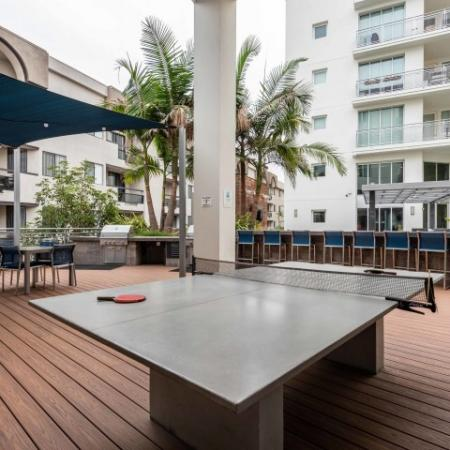 Ping Pong Outdoor Deck