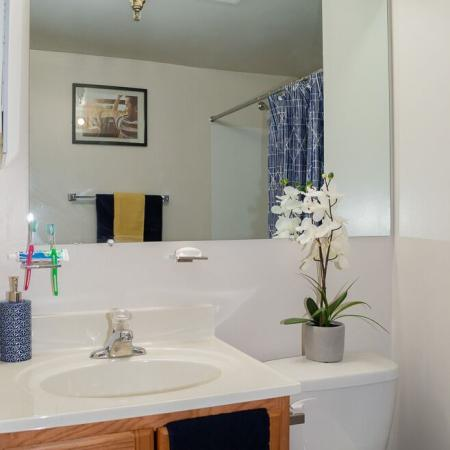 Carriage House Apartments Furnished Apartment Bathroom