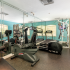 Fitness center with treadmids, freeweights, benches and cardio equipment.