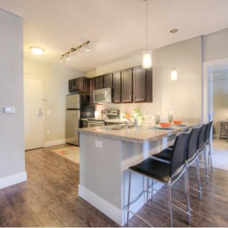 Modern Kitchen   Minneapolis MN Apartment For Rent   44 North