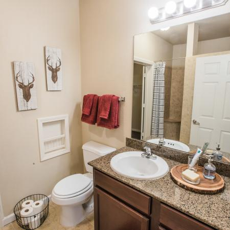 Luxurious Master Bathroom | Apartment in College Station, TX | Parkway Place