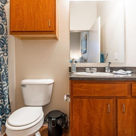 Spacious Bathroom | Normal IL Apartment For Rent | The Edge on Hovey