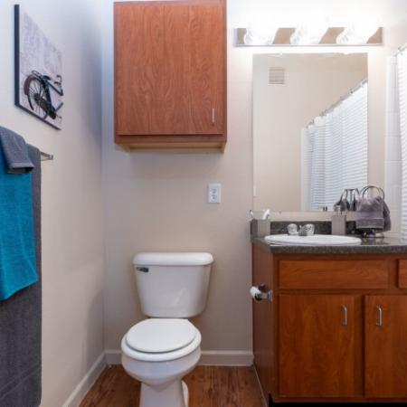 Residents in the Bathroom | Apartment Homes in Normal, IL | The Edge on Hovey