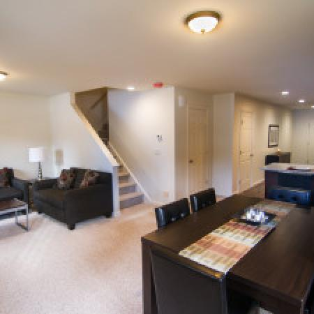 Elegant Living Room | Apartments for rent in Mansfield Center, CT | Meadowbrook Gardens