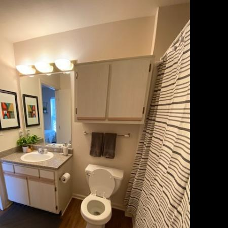 Spacious Bathroom | Mt Pleasant MI Apartment For Rent | University Meadows