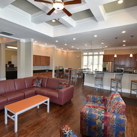 Luxurious Living Room   Apartment Homes in Spartanburg, SC   Valley Falls