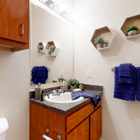 Bathroom | The Edge on Hovey | Apartments in Normal, IL
