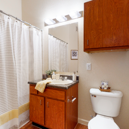 Conventional Bathroom | The Edge on Hovey | Apartments in Normal, IL