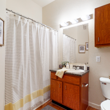 Standard Bathroom | The Edge on Hovey | Apartments in Normal, IL