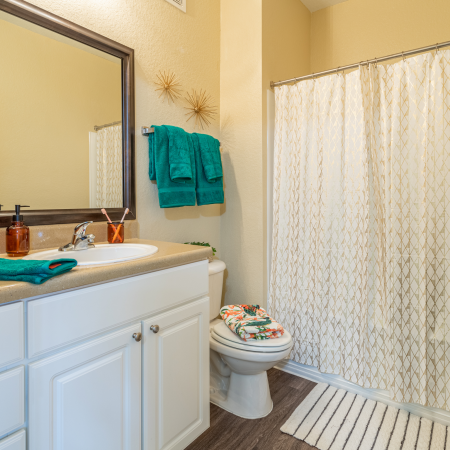 Bathroom with vanity mirror and cabinetry | Shower and tub visible | Hawks Landing | Apartments in Tampa, FL