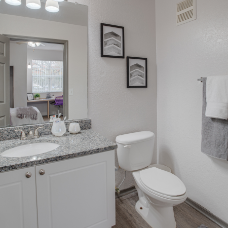 Traditional Bathroom | Station 42 | Off-Campus Tampa Housing