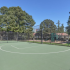 Community Basketball Court | Apartment Rentals Beaverton Oregon | Arbor Creek