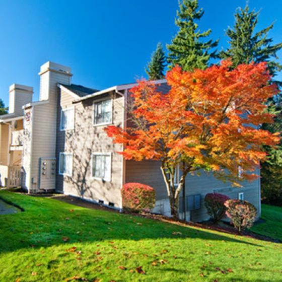 Apartments for Rent in Shoreline, WA |  Ballinger Commons