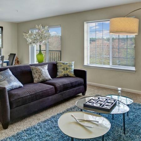 Elegant Living Room | Studio Apartments In Dupont Wa | Trax at DuPont Station