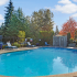 Sparkling Pool | 1 Bedroom Apartments Tukwila | The Villages at South Station