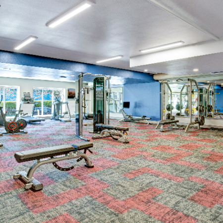 Fitness Center with Cardio and Strength Training Equipment