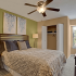 Bedroom Interior: Lime Green accent wall with cream color walls and white trim, Dark cherry headboard platform bed with pattern coverings and brown throw pillows, carpet flooring, contemporary nightstands and table lamps, Large windows. Dec