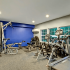 Fitness Center: fitness equipment, large windows with views.