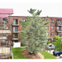 Winslow House Residential Building View from Balcony | Apartments near Blackwood, NJ