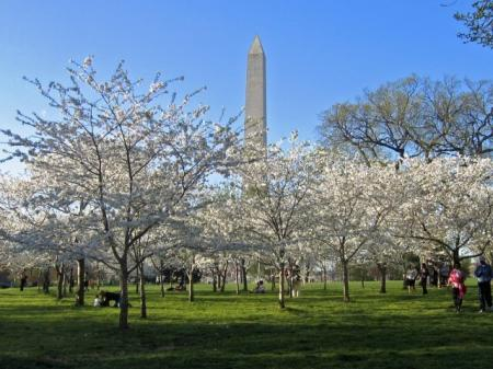 Washington DC Apartments For Rent | Meridian at Gallery Place