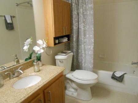 Elegant Bathroom | Luxury Apartments In Frederick MD | Reserve at Ballenger Creek