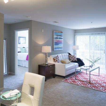Luxurious Living Room   Apartments For Rent Frederick MD   Reserve at Ballenger Creek