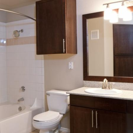 Apartments for Rent Dallas, Texas|Master Bathroom|Eastbridge Apartment Homes