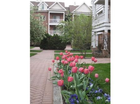 Apartments Homes for rent in Edgewater, NJ | Mariner's Landing Apartments