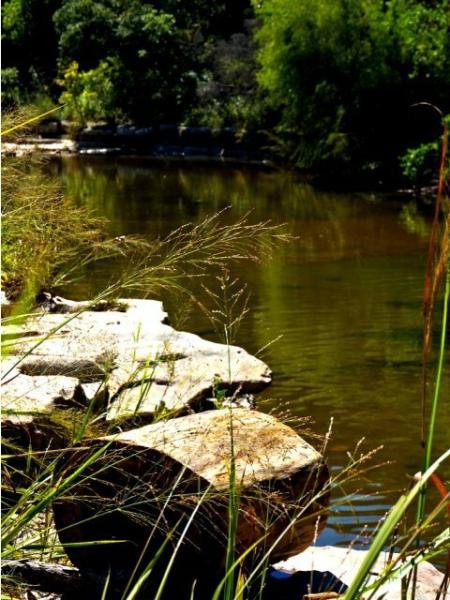 Austin TX Apartments For Rent   Canyon Springs at Bull Creek