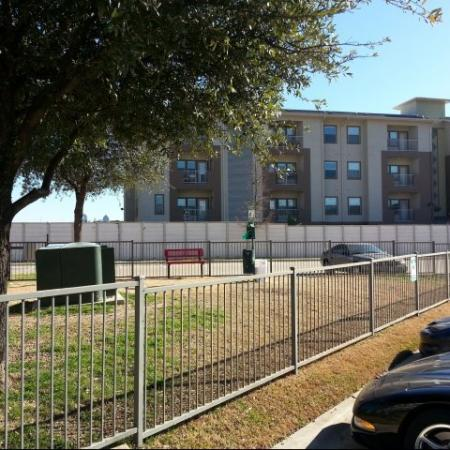 Community Bark Park | Apartment in Dallas, TX | 5225 Maple Avenue Apartments