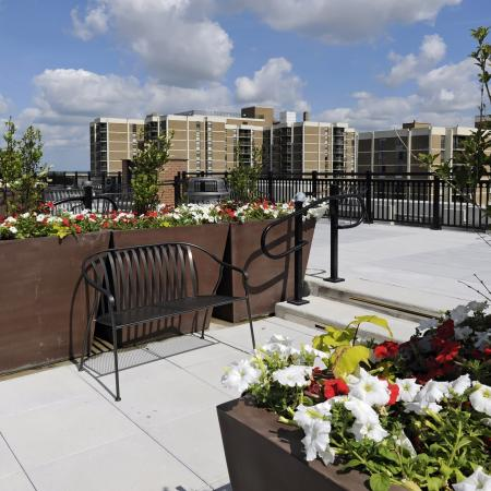 Resident Sun Deck | Rent Apartment Arlington VA | Siena Park Apartments