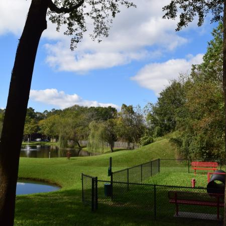 Deerfield Apartments Fenced Dog Park next to a lake and shaded by trees