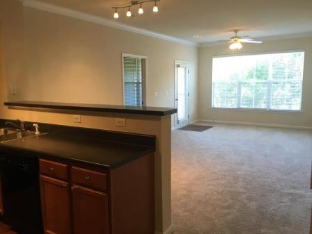Luxurious Living Room | Apartment Homes in Knightdale, NC | Greystone at Widewaters