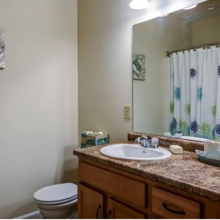 Bathroom with large vanity and mirror mounted above. Neutral colored counter with light wood lower cabinets and toilet. Shower curtain reflection seen in mirror.