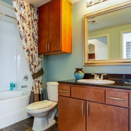 Spacious Bathroom | Apartment In Tampa FL | The Lodge at Lakecrest