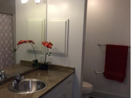 Elegant Bathroom   Apartments in Dallas, TX   5225 Maple Avenue Apartments