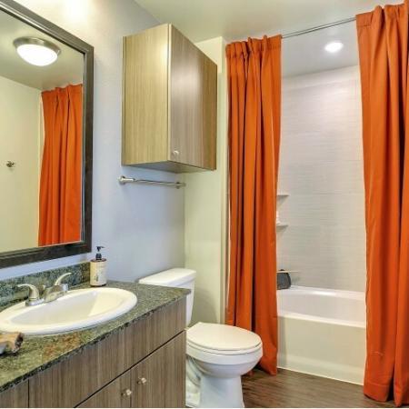 Elegant Master Bathroom | Apartments Las Colinas, TX | Alexan Las Colinas