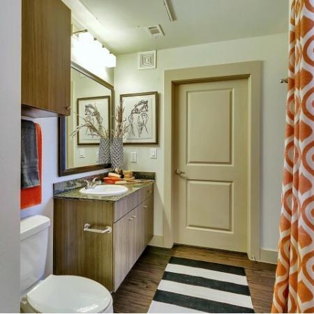 Vast Master Bathroom | Las Colinas TX Apartments For Rent | Alexan Las Colinas