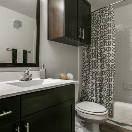 Elegant Master Bathroom   Apartments Dallas, TX   Loft + Row